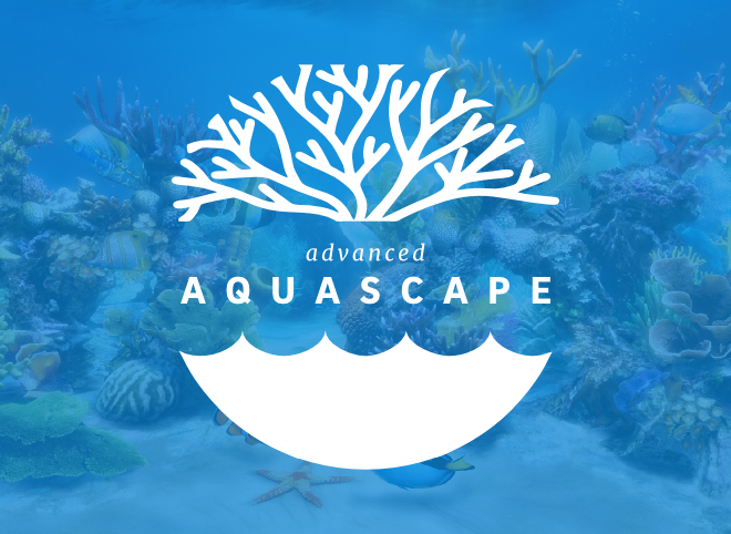 Advanced Aquascape
